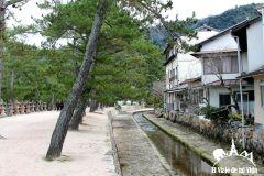 La Isla de Miyajima