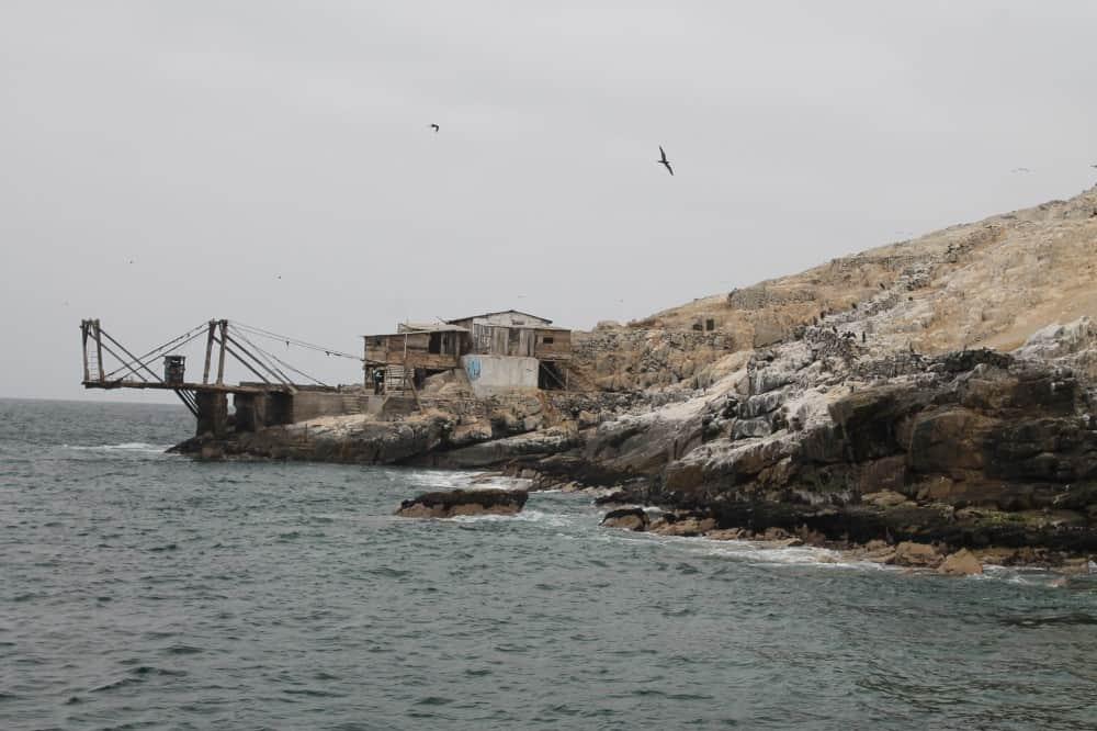 Excursión a la Isla Palomina, Lima, Perú