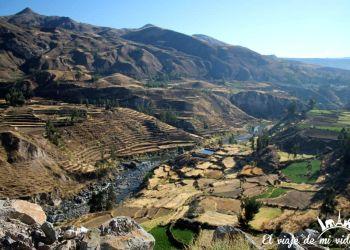 Excursión de un día al Cañón del Colca