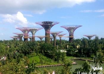 Visita a Gardens by the Bay