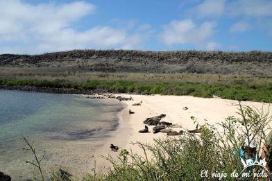 Vistas a la isla de Santa Fe, Galápagos