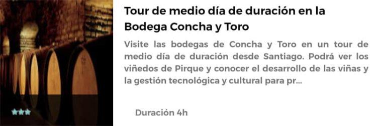 Visita a la bodega Concha y Toro