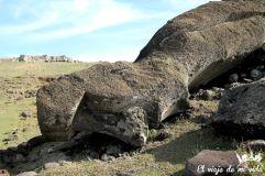 Misterios y leyendas sobre los moais caídos