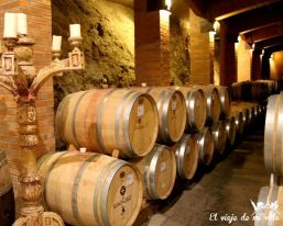 Bodega Viña Santa Cruz en Chile