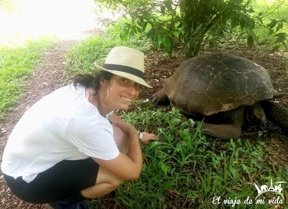 Tortuga de Galápagos, Ecuador