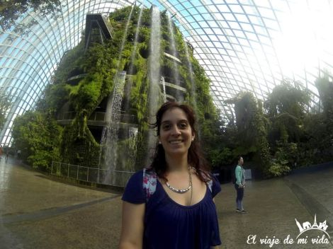 Alucinando con los Gardens by the Bay de Singapur