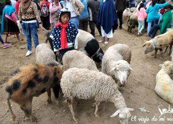 Excursión de un día a Otavalo