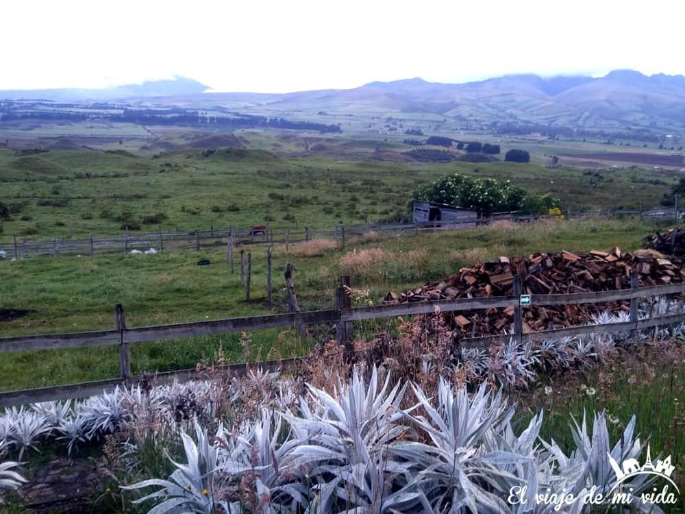 El Parque Nacional de Cotopaxi desde el hostel Secret Garden