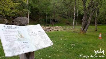 Bosque de los Trossachs, Escocia