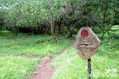 Finca el Chato en Santa Cruz, Galápagos
