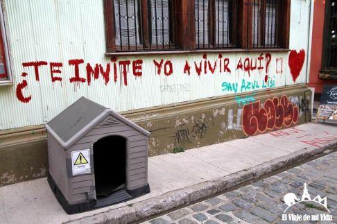 Las casitas para perros abandonados