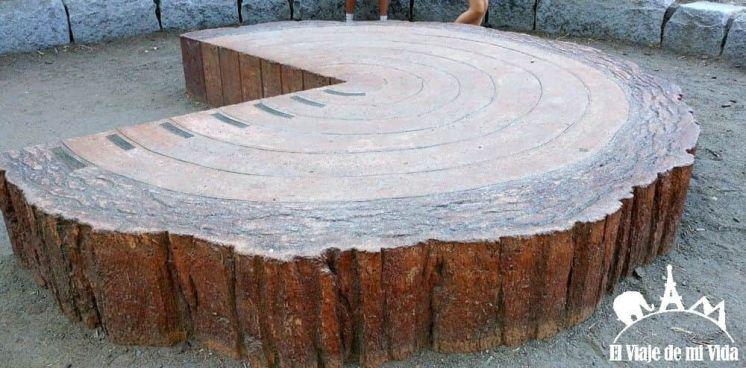 Tamaño de las sequoias