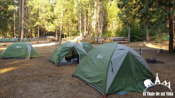 Zona de acampada en Yosemite