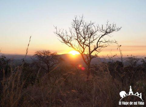 Sabana sudáfricana
