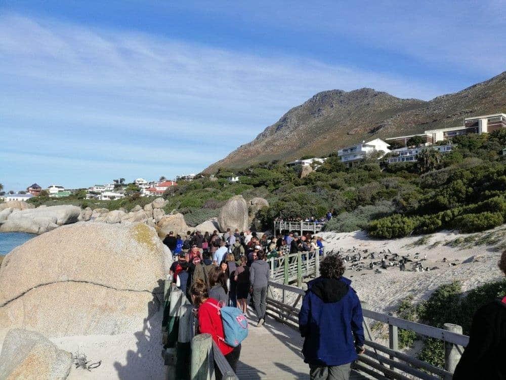 Turistas en Boulders Beach