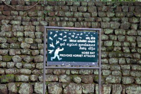 05 Viajefilos en Sri Lanka. Sigiriya 05