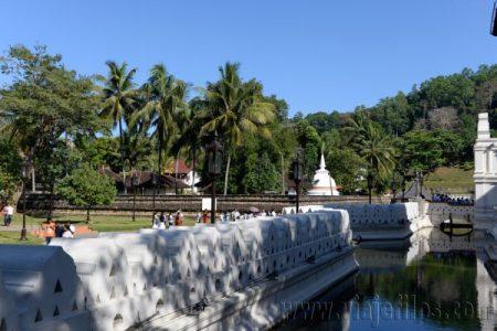 09 Viajefilos en Sri Lanka. Kandy 02