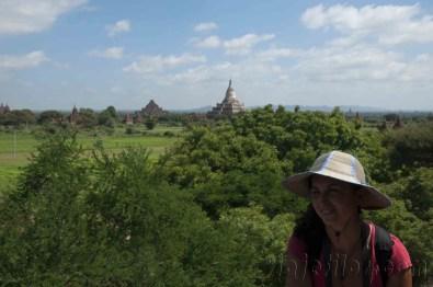 Bagan 33