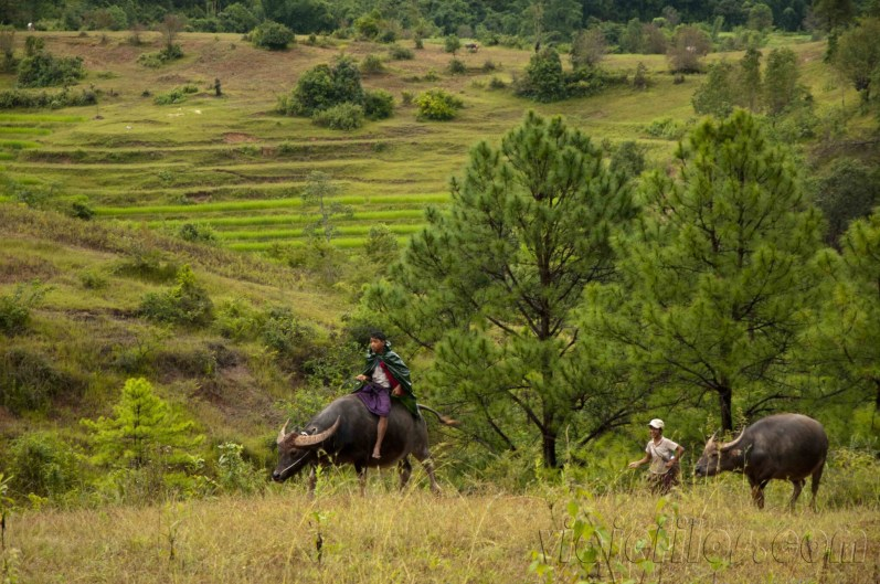 Trekking Kalaw-Inle 18