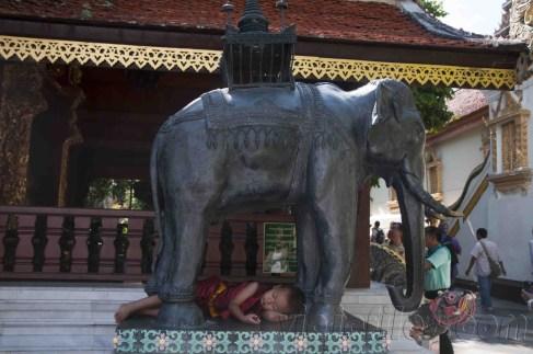 02 Doi Suthep, Chiang Mai 14
