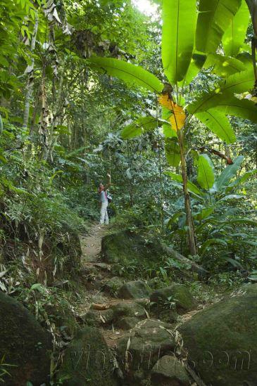 05 Trekking Chiang Rai 21