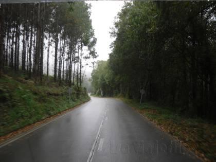 Isa Camino de Santiago 05