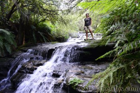 Viajefilos en Australia. Blue Mountains 045