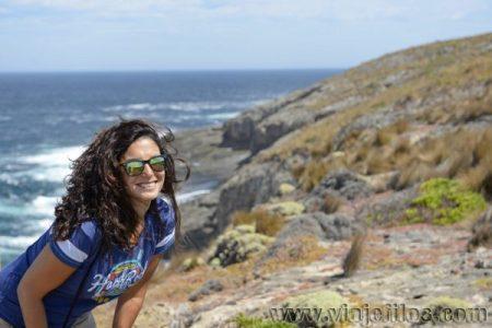 Viajefilos en Australia. Kangaroo 38