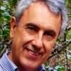 Foto del perfil de Francisco Vera