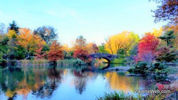 Central parque no outono