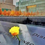 Nova York - flores amarelas memorial de 11 de setembro