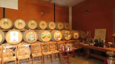 vinicolas-gregas-7