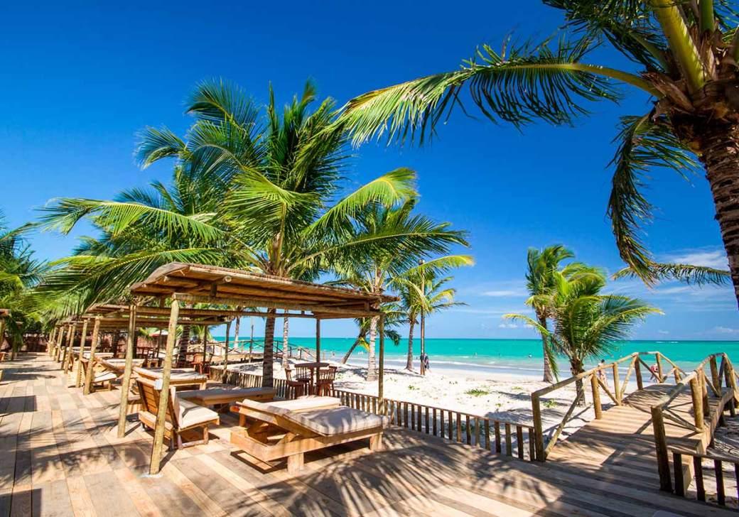Playa de Ipioca (Hibiscus)