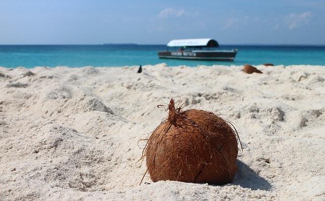 Playa Cofresí - Coco