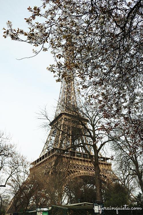 Visita torre Eifel
