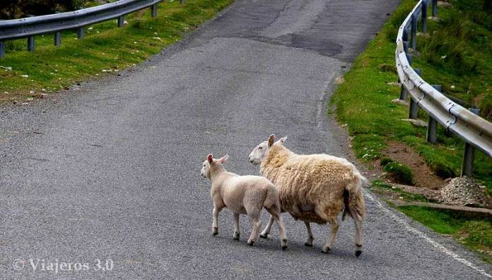 carreteras isla de Skye en Escocia