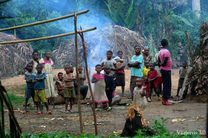 poblado pigmeo en Camerún