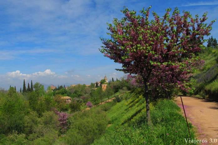 un paseo por Granada, los jardines de Carmen de los Mártires