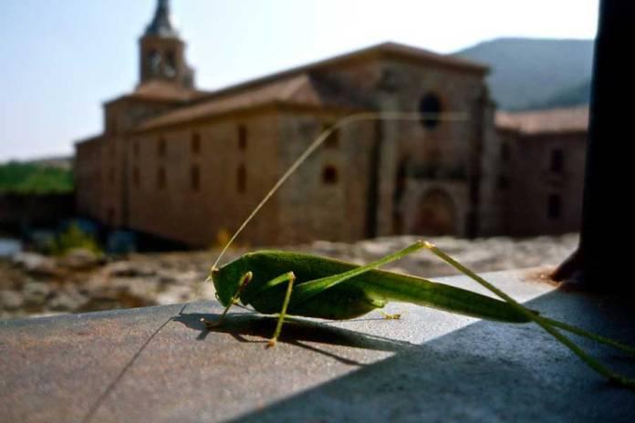Monasterio de Yuso, lo mejor de La Rioja