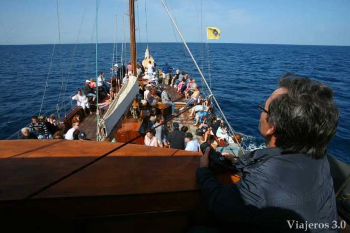 Barco Azul, avistamiento de cetáceos en Tenerife