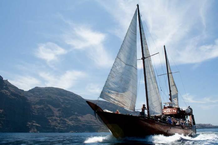 Excursión en barco para avistamiento de cetáceos en Tenerife