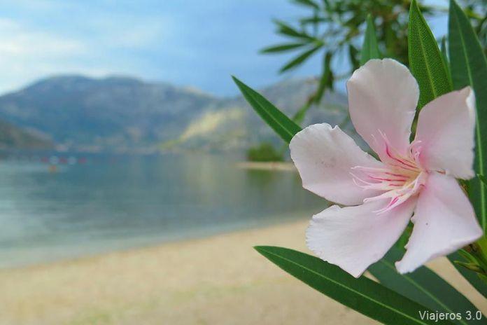 viajar a Montenegro, los imprescindibles en la bahía de Kotor