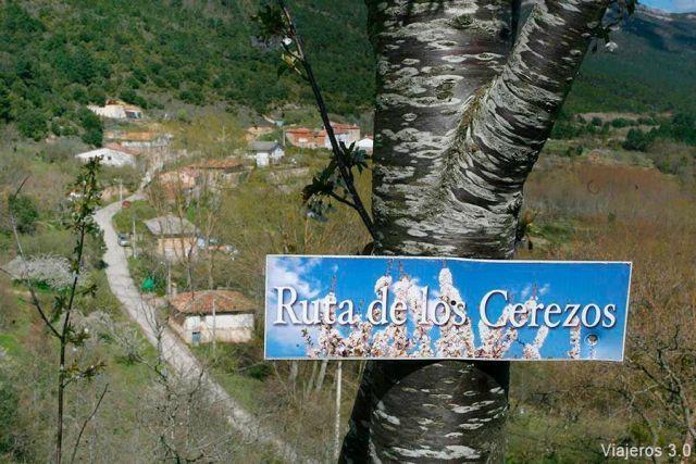Ruta por el valle de las Caderechas, ruta de los cerezos