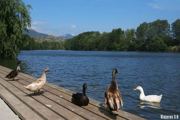 río Ebro a su paso por Briñas, uno de los pueblos más bonitos de La Rioja alta
