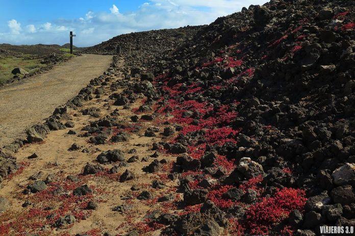 paisajes volcánicos en la isla de Lobos