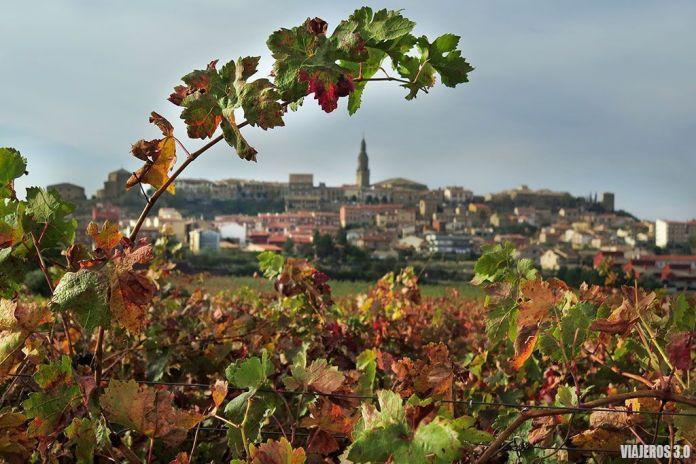 Briones, actividades de enoturismo en La Rioja