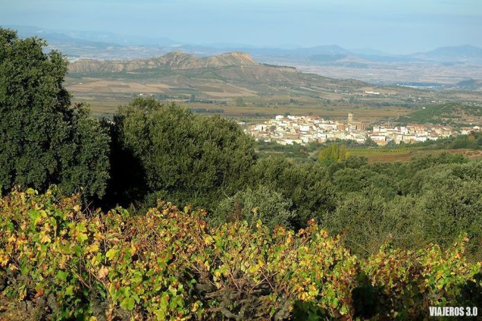 vino supurao, actividades de enoturismo en La Rioja, cerca de Logroño