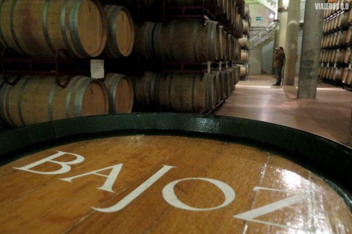 Sala de Crianza del Museo del Vino de Pagos del Rey