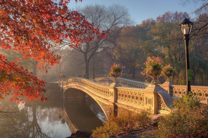 Central Park, visitar Nueva York en 4 o 5 días