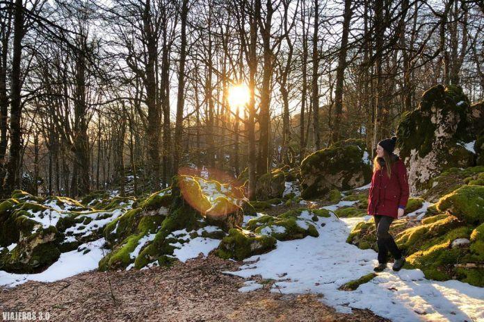 Hayedo encantado, Parque Natural de Urbasa y Andía